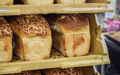 Voedselverspilling: Wat gebeurd er met ons (oud) brood?